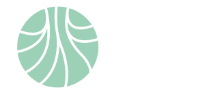 logo Fundación Ingenio
