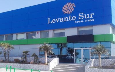 La cooperativa Levante Sur, nuevo patrono de Fundación Ingenio